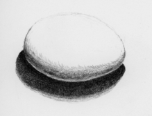 Drawing of egg, lit from above.