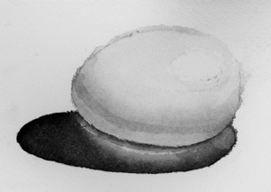Black and white watercolor egg