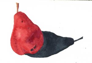 pear-dec-31-2013-img028