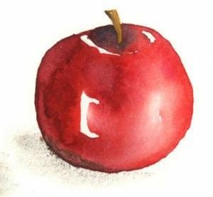 Apple-1-300-H-img069-1