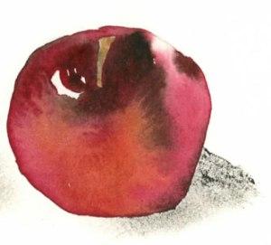 Apple-3-300H-img069-1