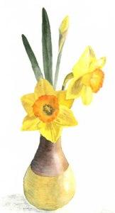 Daffodils-400H-img074